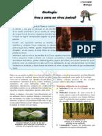 ecologia 19-11