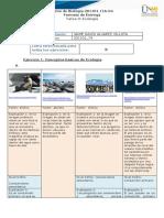 Formato de Entrega Opción B David_Alvarez