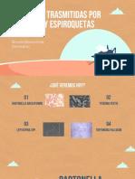 Bacterias trasmitidas por vectores y espiroquetas