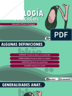 PATOLOGIA DE LA VESICULA BILIAR