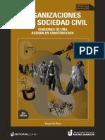 De Piero 2020.pdf