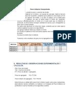 Peso Unitario Compactado programa