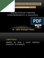 4MACRO ETNIAS Y GRUPOS LINGUÍSTICOS EN LA AMAZONÍA