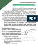 15 - Biossíntese do Colesterol.pdf