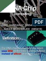 DNA chip