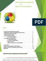 Management-environnemental-pour léconomie nationale