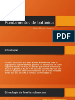 BOTÂNICA - FAMÍLIA SOLANACEAE