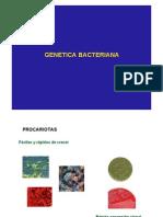 Clase 7, Genetica bacteriana