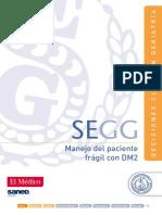 SEGG DM2 Digital3-2.pdf