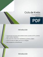 Ciclo de Krebs.pptx