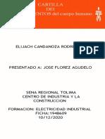 CARTILLA DE ESTIRAMIENTOS (1) SEMANA 15 ELIA.pptx