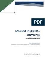 Reporte Gerencial_LPD.pdf