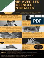 """""""En finir avec les violences conjugales"""" l'infographie réalisée par des lycéens de Joseph Cugnot à Chinon"""