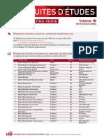 5-PE_2018_DSEG_Marketing-vente.pdf