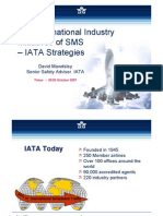 IATA Strategies - The International Industry Initiatives of SMS