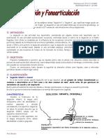 Deglución y Fonoarticulación (n° 11-12-13)
