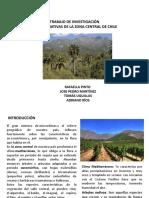 Flora Nativa zona central Chile