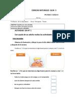 CIENCIAS NATURALES   primero basico   guia  n°  2  lunes 29 de junio.docx