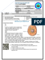 G1- 6° Y 7° - BIOLOGIA.doc