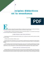 LOS PRINCIPIOS DIDACTICOS EN LA ENSEÑANZA-HERMINIA RUVALCABA