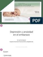 5. Depresión y ansiedad en el embarazo. Azul Forti