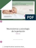 Neurociencia y psicologia embarazo.Olza