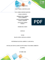 documento final Tarea 2- identificacion.docx