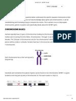 Basics of chromosomes.pdf