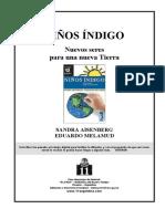 Aisenberg Sandra & Melamud Eduardo  - Los Niños Indigo - Nuevos seres para una nueva Tierra