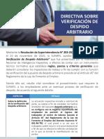 Resolución de Superintendencia N° 203-2020-SUNAFIL
