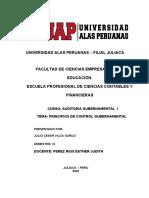 PIRNCIPIOS DE AUDITORIA