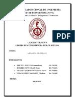 INFORME N°3 (1) SUELOS.docx