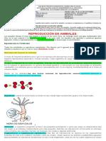 Guía 6  OctavoC.  Naturales (1).docx