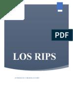 Resumen marco teórico que manejan los RIPS