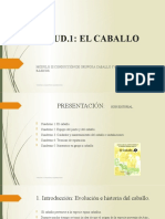 UD. 1. El Caballo. (1)