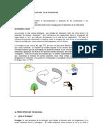 Introduccion_Ecologia.docx