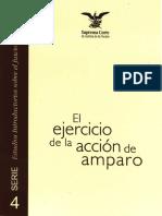 4. El ejercicio de la Acción de Amparo.pdf