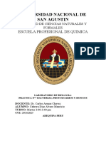 Informe 7 biologia