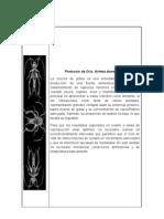 Protocolo Grillos