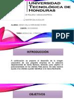 Tarea_4-II_parcial