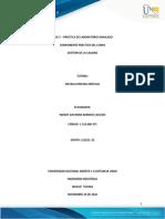 Informe de practica de laboratorio simulado