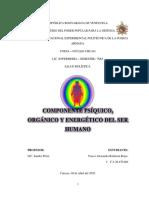 INFORME#3 COMPONENTE PSÍQUICO, ORGÁNICO Y ENERGÉTICO DEL SER HUMANO