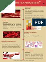 Infografía_Composición del tejido sanguineo_.pdf
