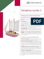 Navigating Liquidity