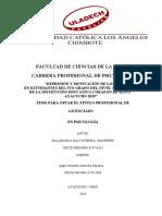 Balabarca Salvatierra, Jeanpiere marco teorico.docx