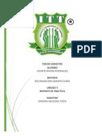 REPORTE DE PRACTICA U5