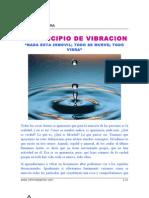 EL+PRINCIPIO+DE+VIBRACION+(R-040709)