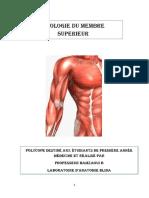 1-muscles de l'épaule et  du bras-converted
