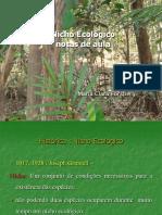 Nicho ecológico em ambiente de Floresta