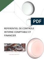 Audit Procus.pdf